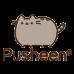 Pusheen Accessory Case