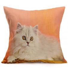 Chinchilla Cat Cushion