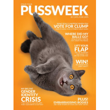 Pussweek Magazine - Issue #4