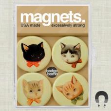 Kittens Magnet Pack