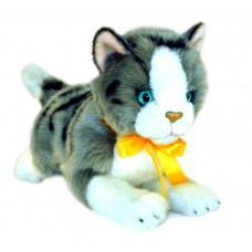 Norwegian Grey Plush Kitten