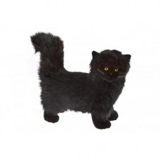Black Plush Cat