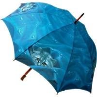 Umbrellas (8)