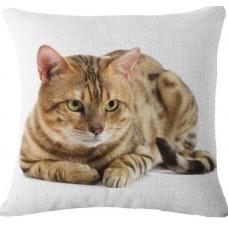 Bengal Cat Cushion