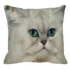Chinchilla Face Cushion