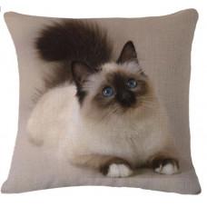 Ragdoll Cushion