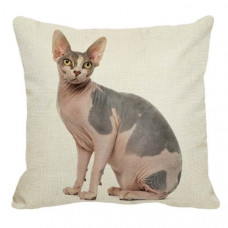 Sphynx Cat Cushion