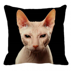 Sphynx Face Cat Cushion