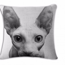 Sphynx Face Cushion